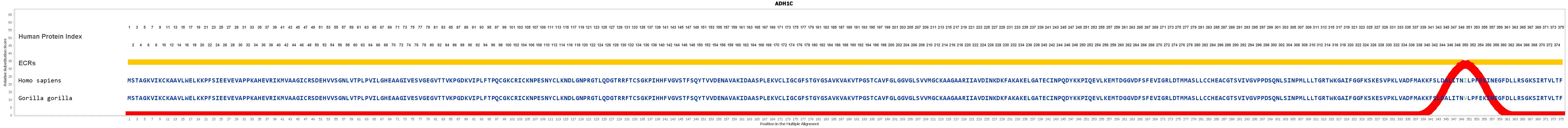 Evolution For ADH1C Gene