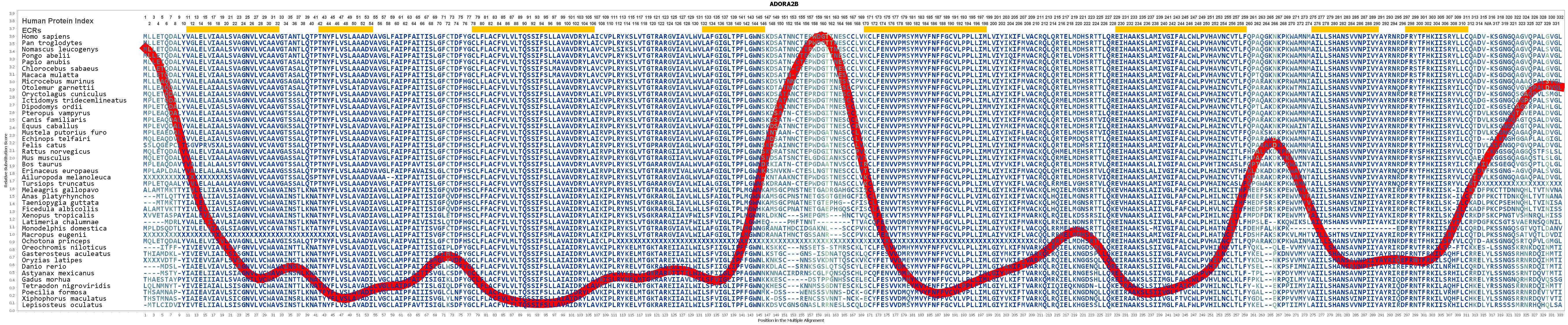 356e5ce74 Evolution for ADORA2B Gene