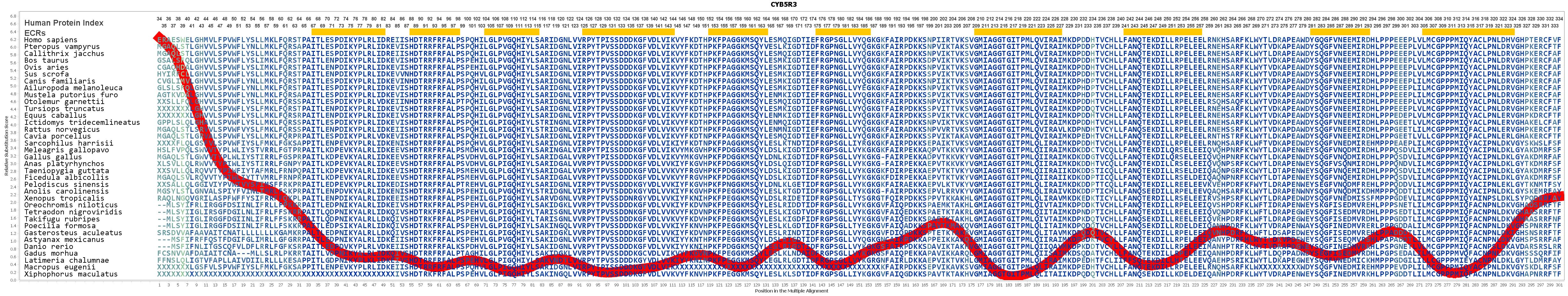 Cyb5r3 Gene Genecards Nb5r3 Protein Antibody Taurus Schematics 740 Evolution For