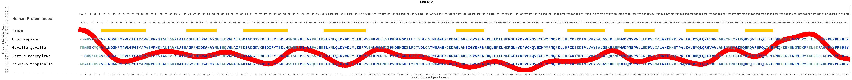 Evolution For AKR1C2 Gene