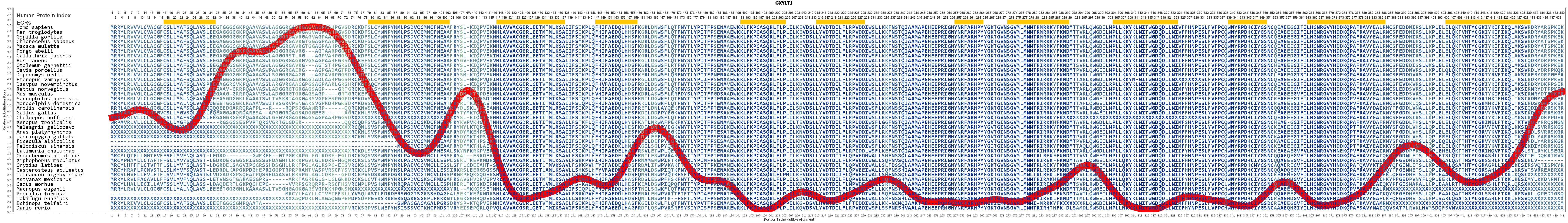GXYLT1 Gene - GeneCards | GXLT1 Protein | GXLT1 Antibody