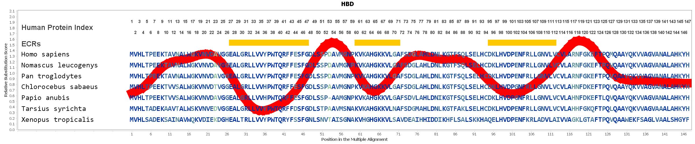 HBD Gene - GeneCards | HBD Protein | HBD Antibody