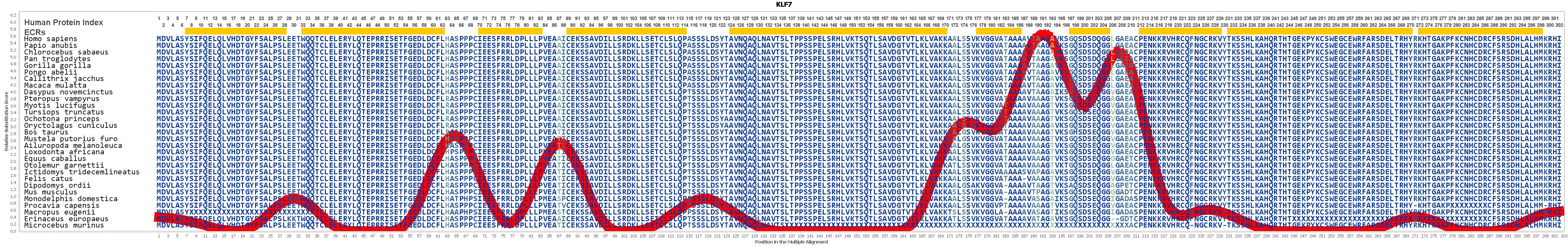 KLF7 Gene GeneCards KLF7 Protein