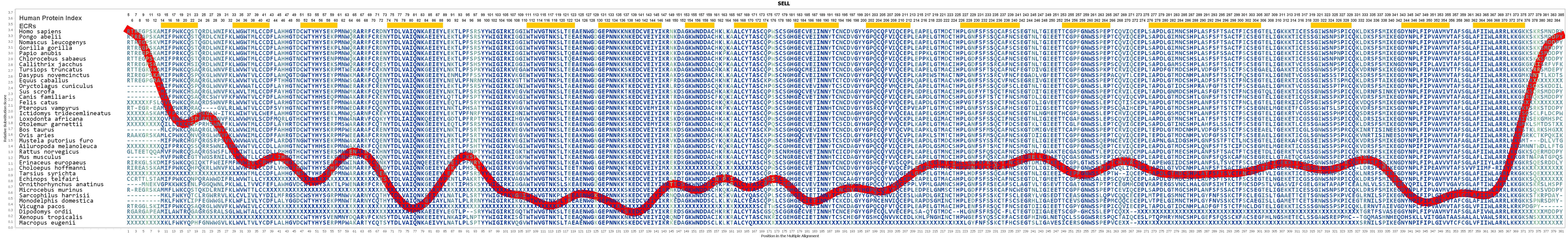 SELL Gene GeneCards LYAM1 Protein