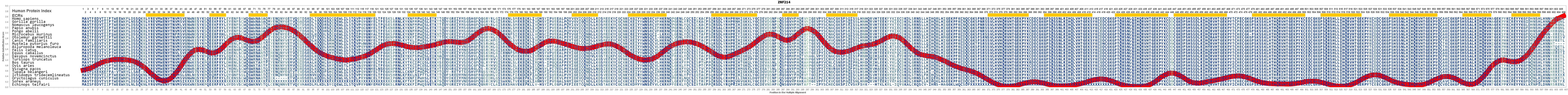 ZNF214 Gene - GeneCards | ZN214 Protein | ZN214 Antibody